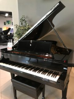 Buy a Steinway piano here in Dallas, Texas